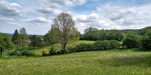 Derbyshire Churches Environment Network