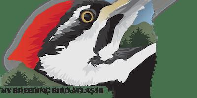 NY Breeding Bird Atlas III Workshop