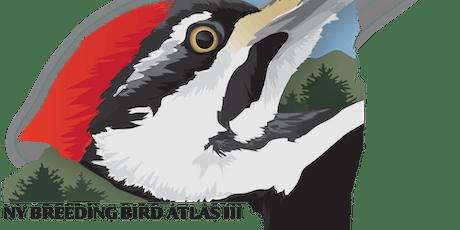 NY Breeding Bird Atlas III Workshop tickets
