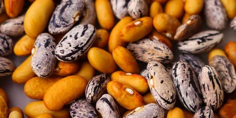Seeds, Beans and Grains Nutrition Class tickets