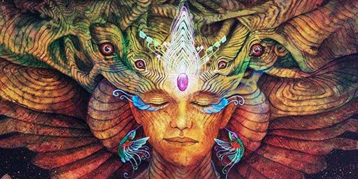Shamanic Dreaming Talk with Open Kava and Herbal Tea