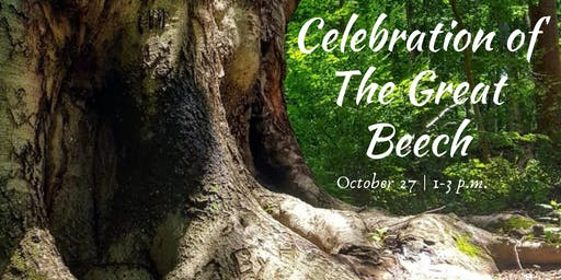 Celebration of The Great Beech