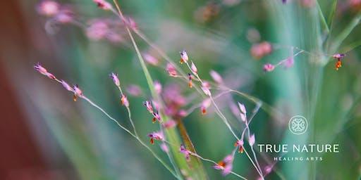 Medicinal Healing Gardens Workshop