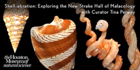 Shell-abration: Exploring the New Strake Hall of Malacology tickets