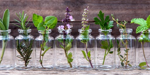 Getting the Most From Your Essential Oils