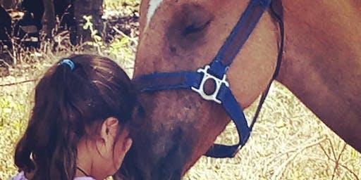 Constelaciones asistidas con caballos
