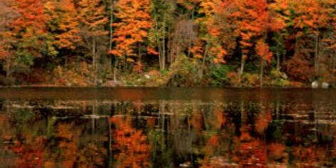 Fall Foliage Pontoon Tour
