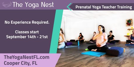 Yoga Teacher Training - Prenatal - No Previous Experience Required - Broward County - Cooper City  tickets