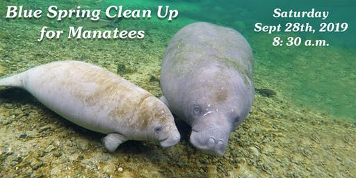 Blue Spring Clean Up for Manatees