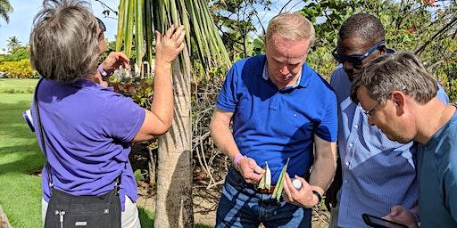 Landscape University - Palm Pests