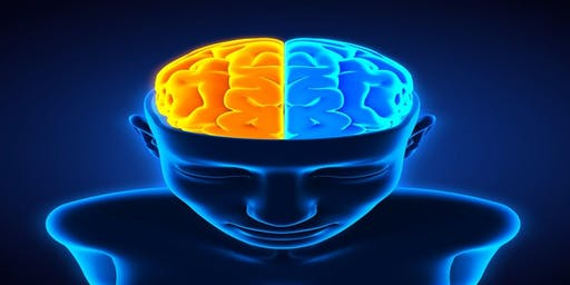 The Effects of Trauma on the Brain and Body