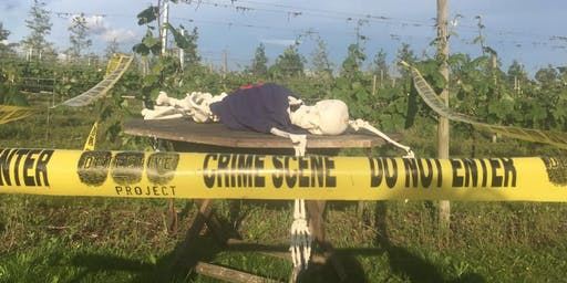 Murder at Walton Brook Vineyard