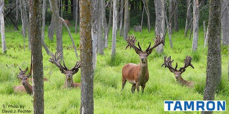 Seminar and Expedition to Shalom Wildlife tickets