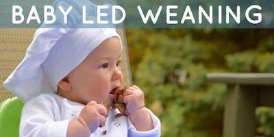 Virtual Baby Led Weaning Workshop