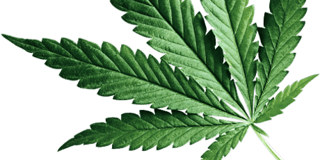Medical Marijuana Cannabis Doctor - Get Approved tickets