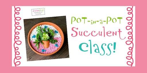 POT in a POT Succulent Class!