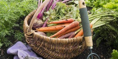 Planting for Fall and Winter Harvest