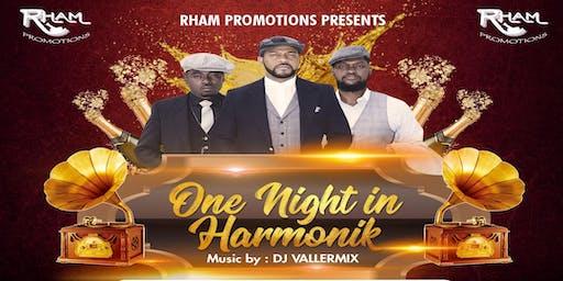 One Night in Harmonik