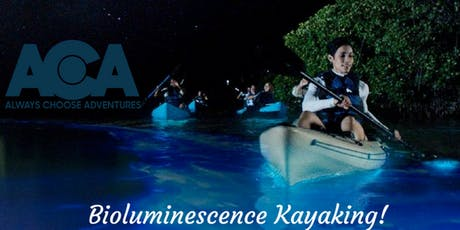 Florida - Clear Kayak Bioluminescent Tour with Always Choose Adventures tickets