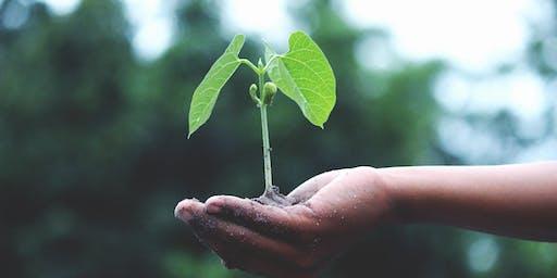 Seed Saving Workshop with Fiona Blackham - Osborne