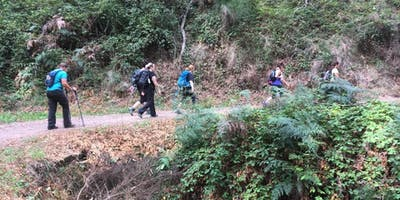 Weekend Walks for Women - Chambers Gully 15th of Sept