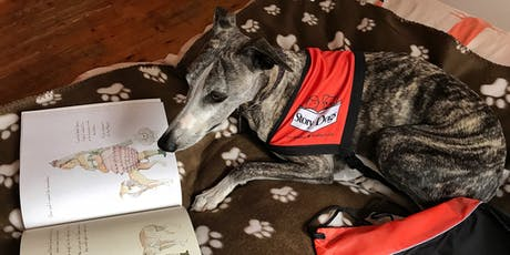Read to Dashi the Story Dog (7-12 yrs) (Gungahlin Library) tickets