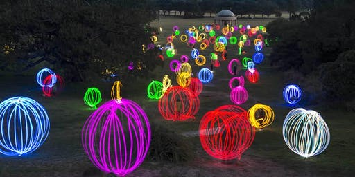 'Forest of Light' in Haig Park