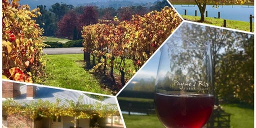Walk for Wellness - Wines, Vines and a little History