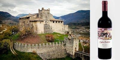 Degustazione vini biologici e visita al Castello