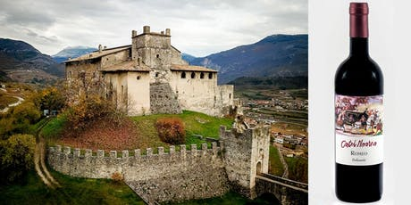 Degustazione vini biologici e visita al Castello biglietti