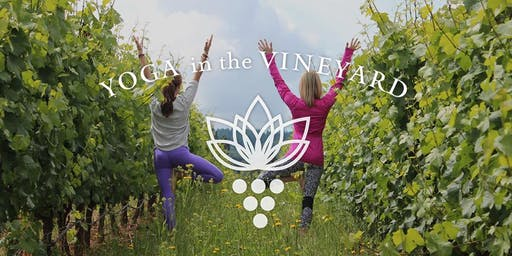 Yoga class, then a glass at Savino Vineyards - August 22nd