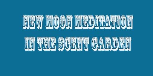 New Moon Evening Garden Walking Meditation + Tea