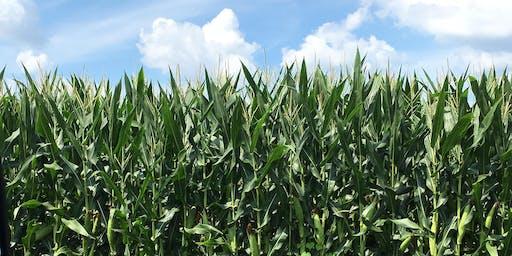 Managing Farm Economics and Soil Productivity