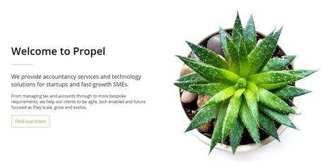 Deloitte Propel & Entrepreneur Accelerator: Meet and pitch the experts! tickets