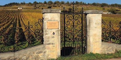 Exploring White Burgundy