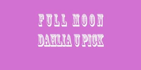 Full Moon Garden Dahlia U Pick tickets
