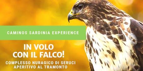 In volo con il falco! Nuraghe Seruci - Aperitivo al tramonto. biglietti