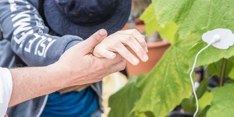 Sensory Beings: Internal Garden tickets
