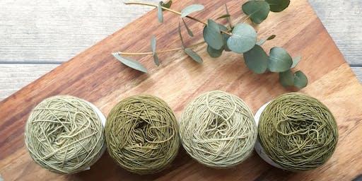 Natural Dyeing Course / Cwrs Lliwio Naturiol