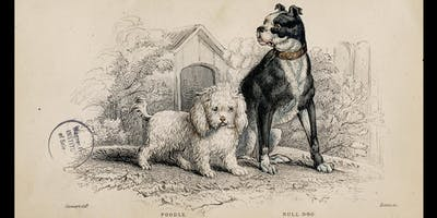 Our Dogs, Ourselves: Alexandra Horowitz with James Serpell