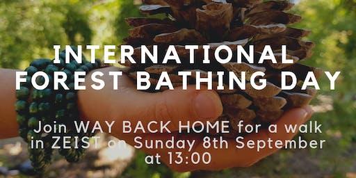 International Forest Bathing Day 2019 Celebration Walk