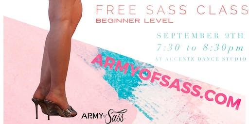 FREE PROMO Sass Class Beginner - Vernon