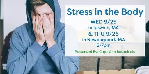 Stress in the Body: Ipswich, MA