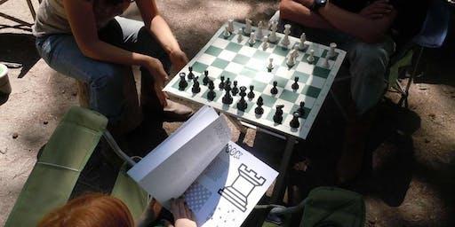 Paulding Chess