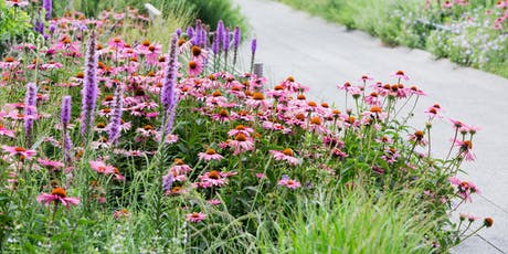 Garden Tour: Medicinal Plants on the High Line tickets