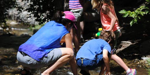 Nature in the City: Stream Exploration