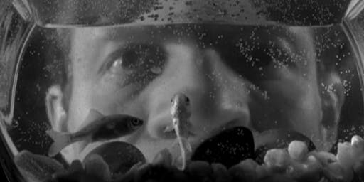 Friday Night Film Noir: Killer's Kiss