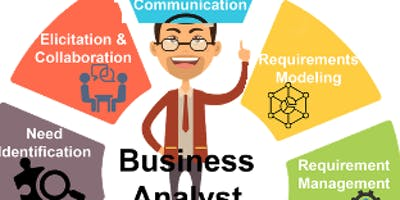 IT Business Analyst training for Certification & Job Placement