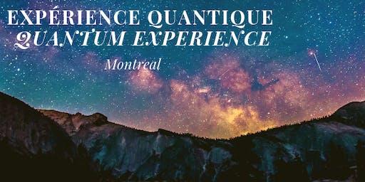 Expérience Quantique / Quantum Experience