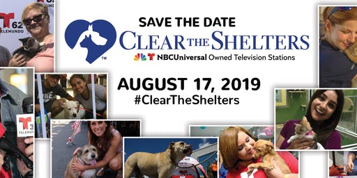 Clear the Shelters: Give a Pet a Loving Home